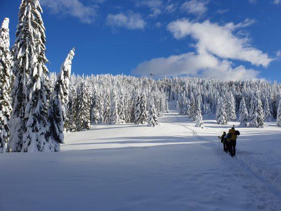 Zimska pravljica na Menini planini